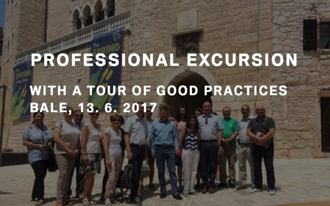 Bale – Professional excursion with a tour of good practices