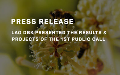 LAG DBK presented the results and projects of the 1st public call