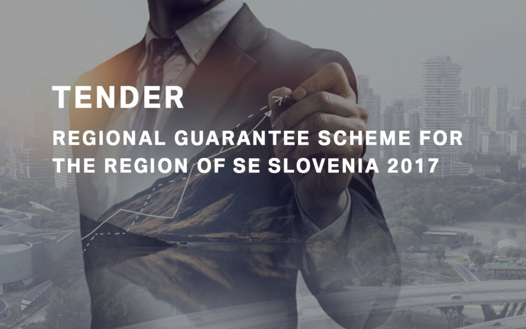 Tender of the Regional Guarantee Scheme 2017