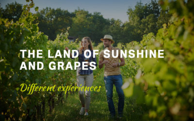 The land of sunshine and grapes