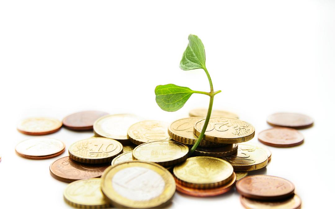 Razpis garancij in posojil iz Garancijske sheme za Dolenjsko za leto 2021