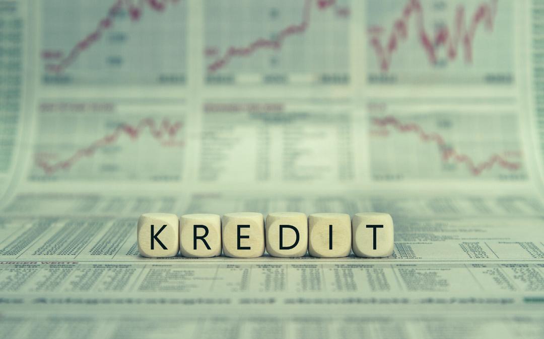 Subvencije obrestne mere podjetniških kreditov na območju Dolenjske 2021